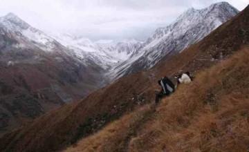 Great Himalayan National Park Conservation area