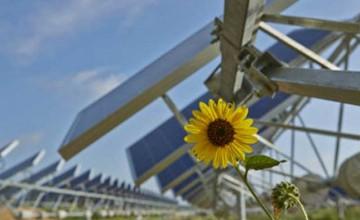 OCI Solar Power Alamos 6 project