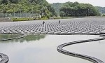 Guangdong_East_Floating_Solar_1