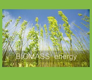 biomass-energy