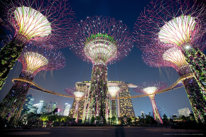 Solar powered magnificent solar trees in Singapore