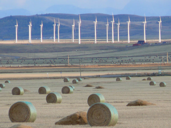 A wind farm in Alberta