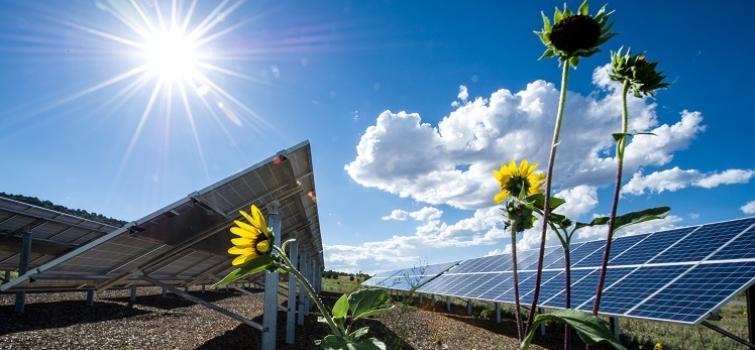 renewable energy USA