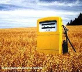 Global biofuel consumption market will reach $256,568.3 million in 2016